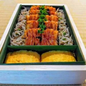 鰻のお弁当1段