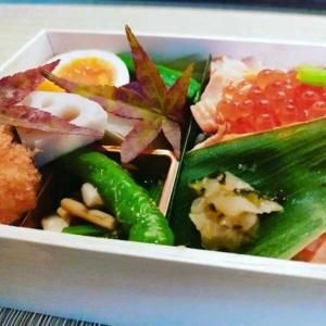 鮭、イクラご飯弁当